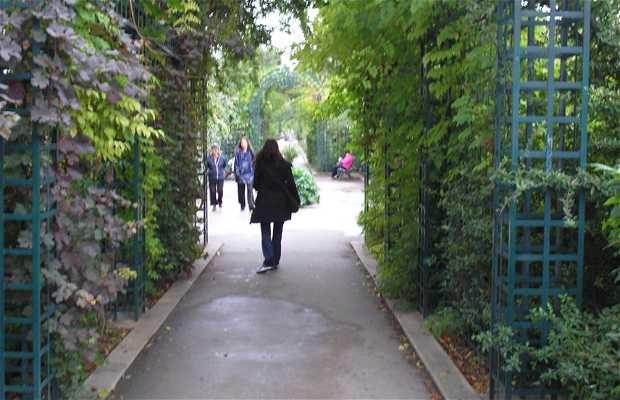 Giardini di La Proménade Plantée a Parigi