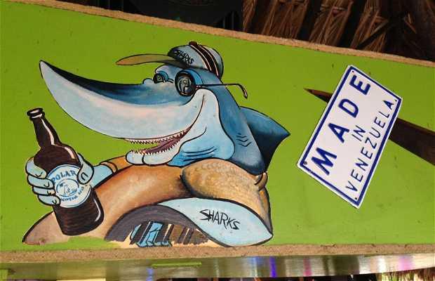Sharks Beach Bar
