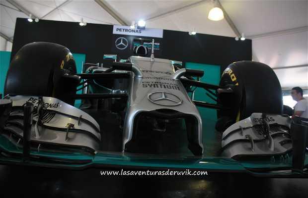 Area de Merchandising F1