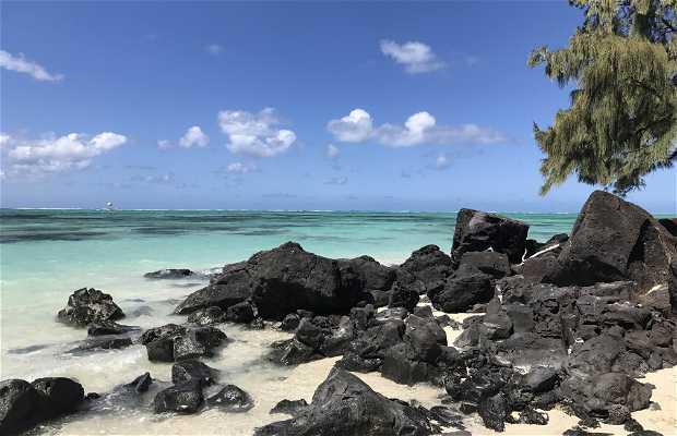 Isla Aux Cerfs