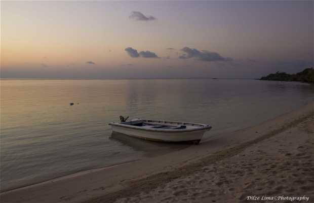 Ilha Tomia