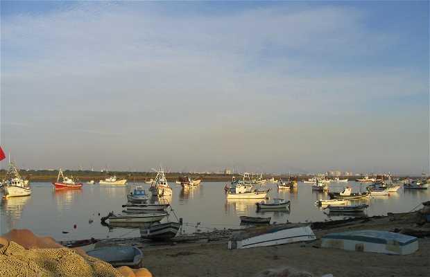 Puerto Pesquero de Punta Umbria