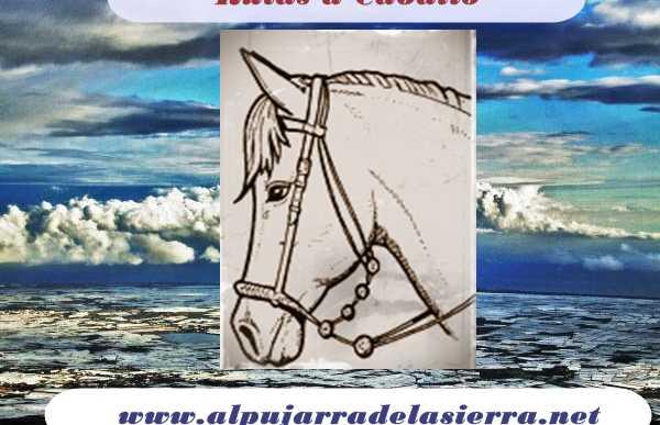 Rutas a caballo por Mecina Bombaron