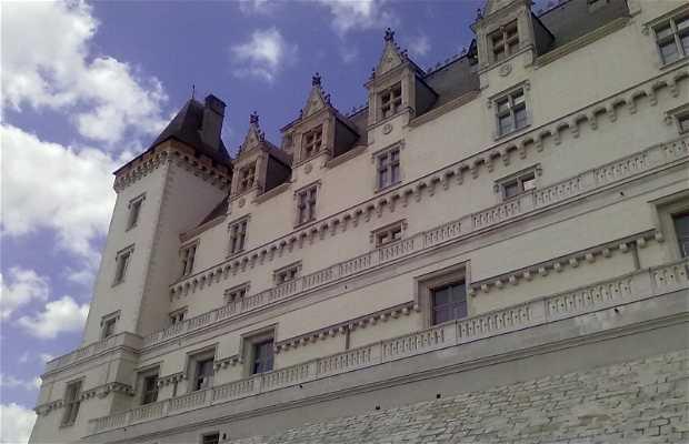 Castillo de Pau