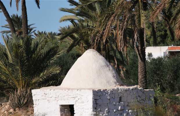 Djerba's countryside