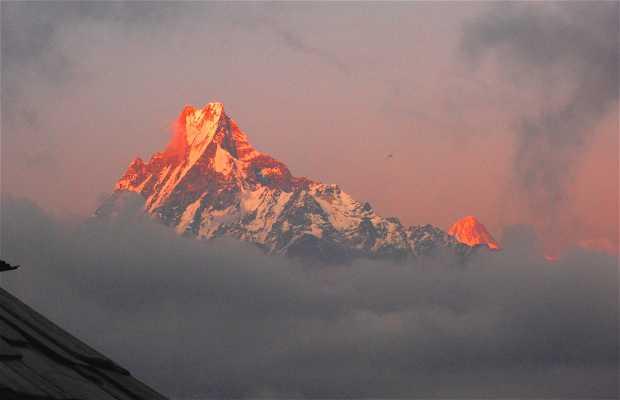 Tadapani (aldea del Annapurna)