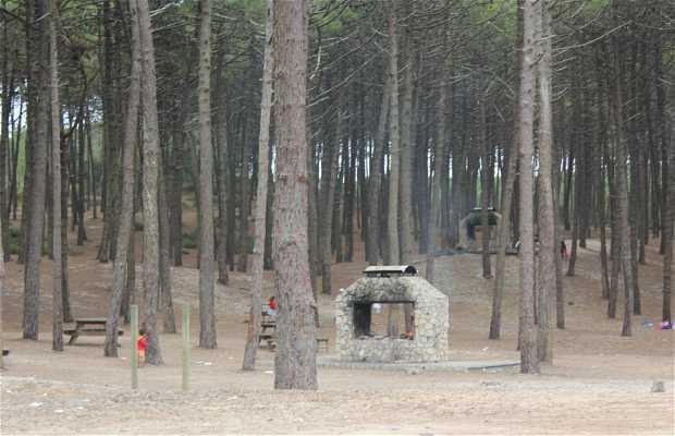 Parque de Meriendas de la calle dos Casais