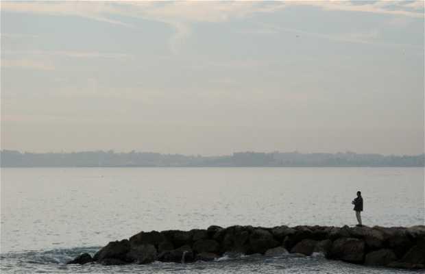 Port de cagnes sur mer