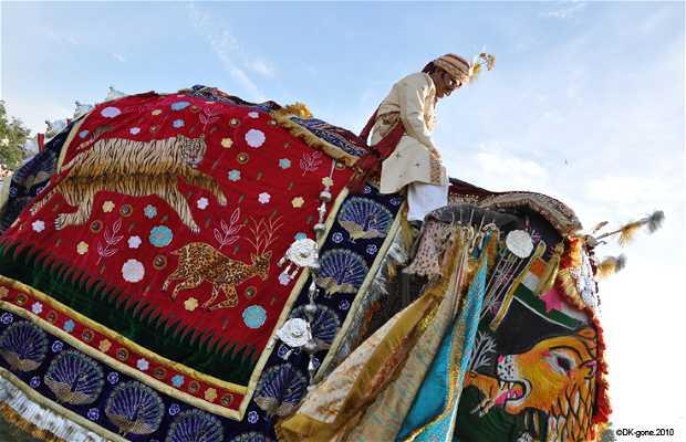 Festival de los Elefantes, Jaipur, India