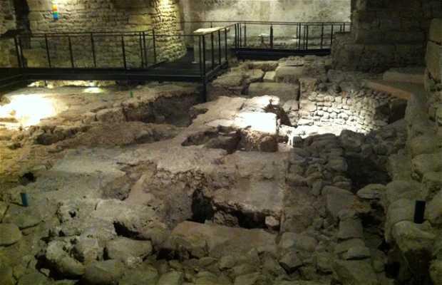 Sitio Arqueologico de la Catedral
