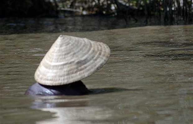 Canales de Ho Chi Minh