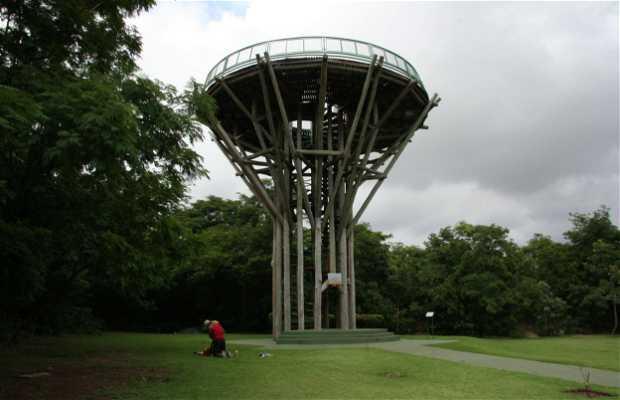 Parque Estadual Mãe Bonifácia