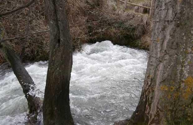 Nacimiento del rio Queiles