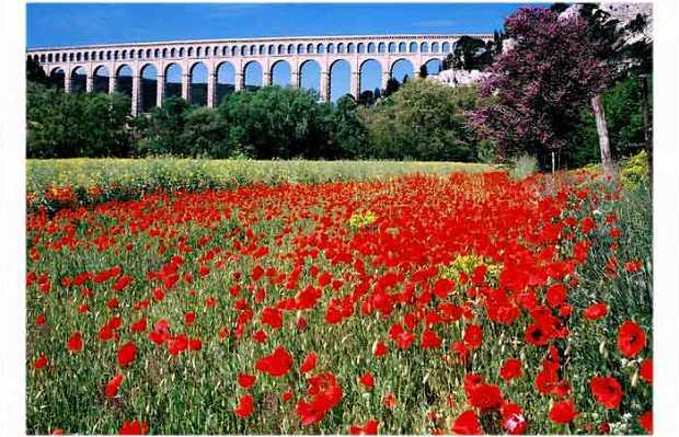 Acueducto de Roquefavour