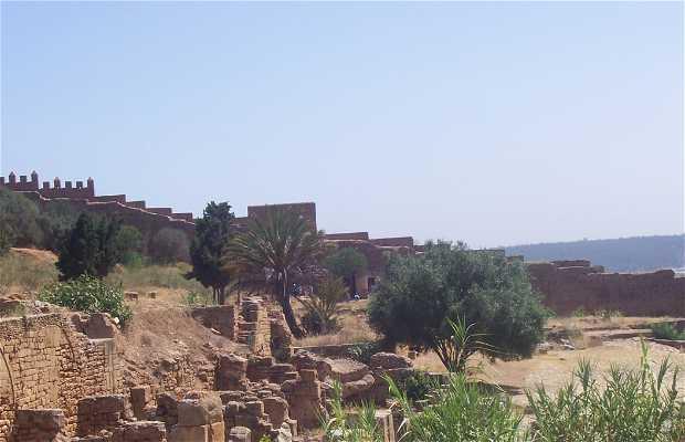 Necrópolis de Chellah