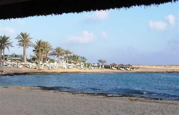 Asimina beach
