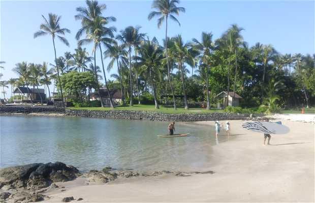 Playa King Kamehameha