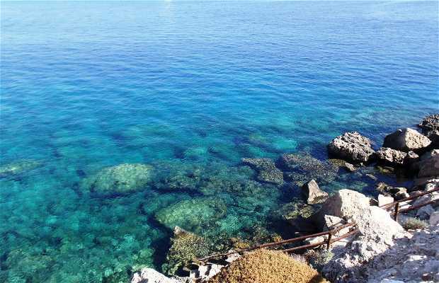 Bahía Konnos