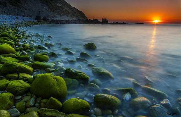 Playa de Meñakoz