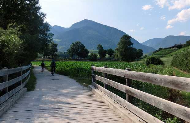 Bici Alto Adige Südtirol Rad