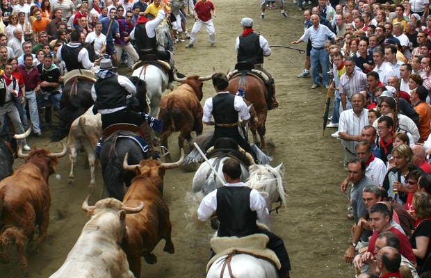 Centre d'Interprétation de l'entrée de taureaux et des chevaux