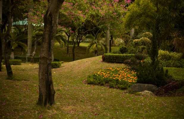 Parque Morse
