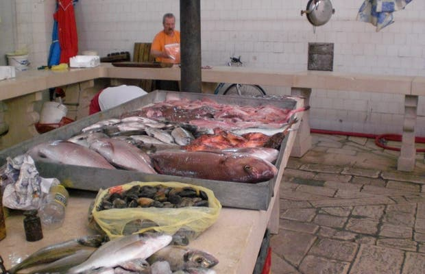 Split Fish Market