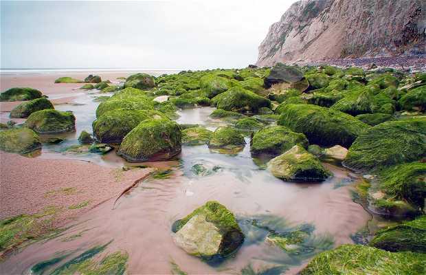 Playa, Escalles, Francia