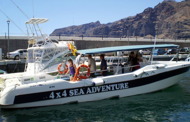 Boat Trip and Whale Watching at Los Gigantes