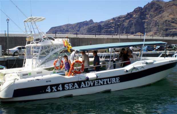 Excursión en barco por Los Gigantes y avistaje de ballenas Calderones