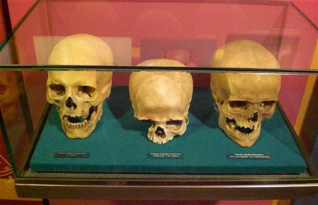 Museo Arqueológico de La Gomera