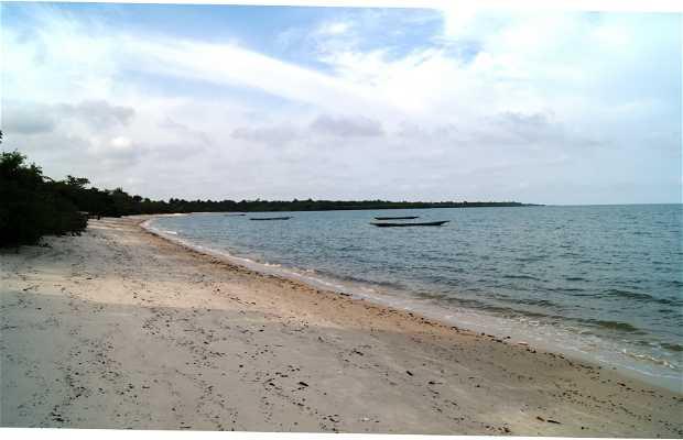Isla de Orango
