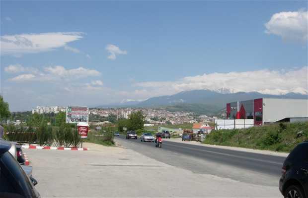 Leshnica