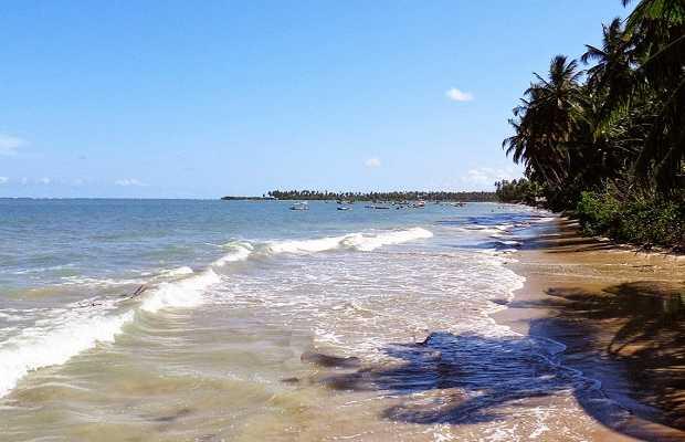 Praia da Barra do Camaragibe