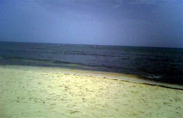 Playa Half Moon