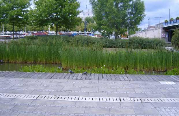 Jardin de Agua