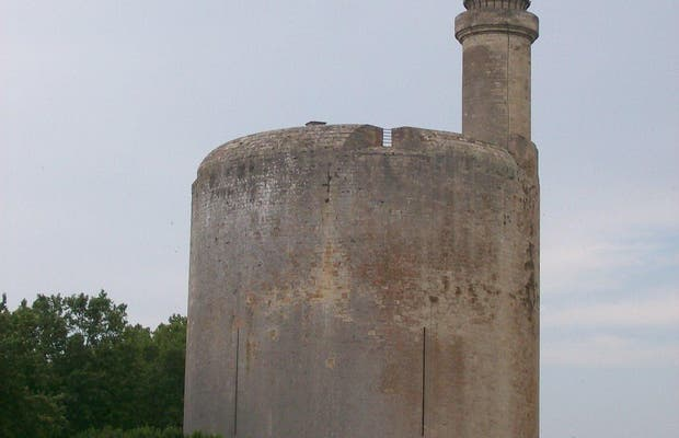 Torres y murals de Aigues-Mortes