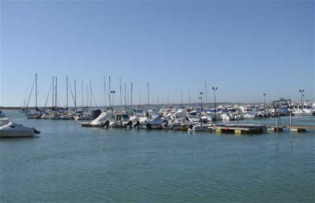 Marina of Sancti Petri