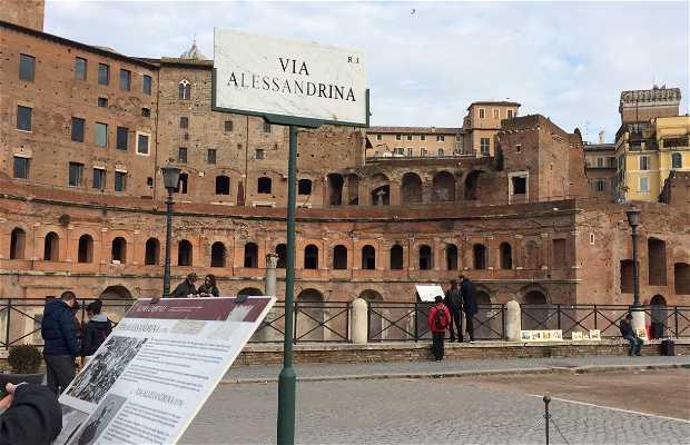 Via Alessandrina