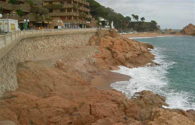 Playa del Reig