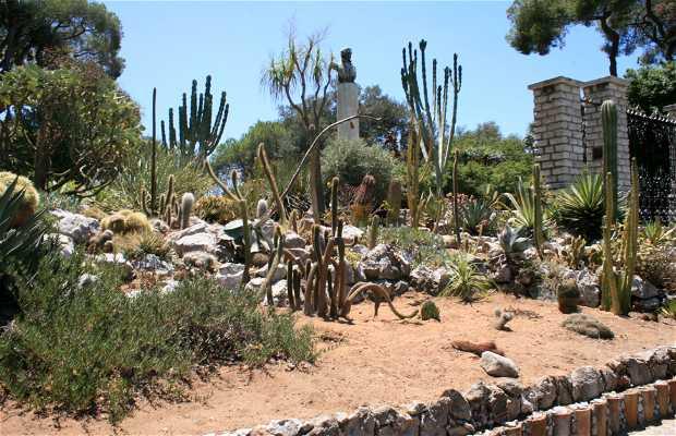 Gibraltar Alamdea Botanical Garden