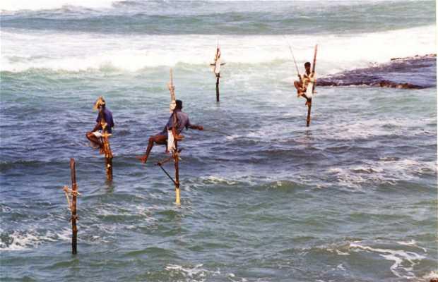 Pescadores en zanco