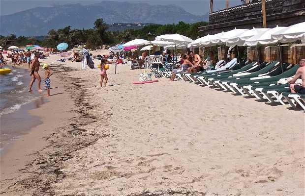 Playa de Cala Rossa (Porto Vecchio)
