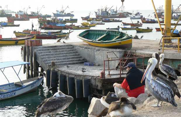 Port of Arica