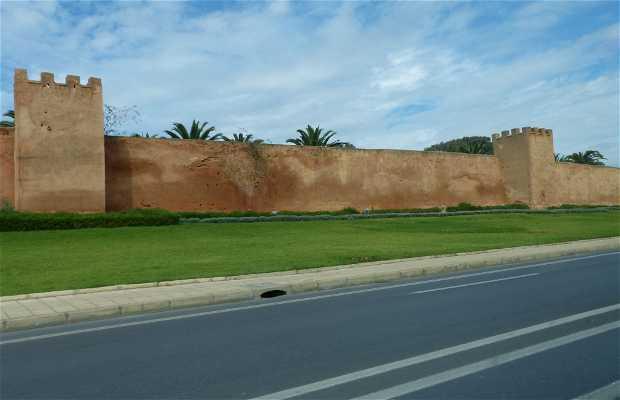 Murallas Almohades