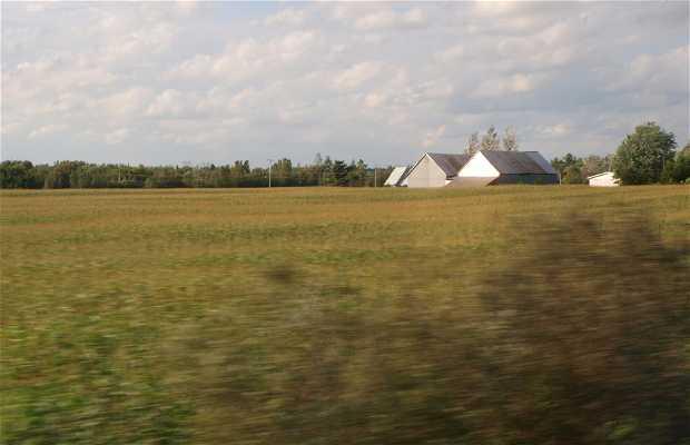 Corredor Quebec-Windsor
