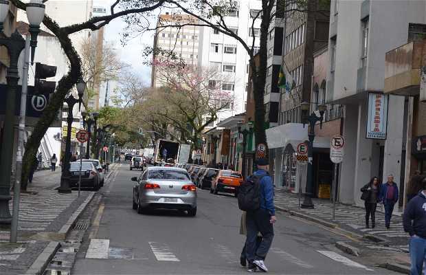 Rua Comendador Araújo em Curitiba  1 opiniões e 5 fotos ddfe5338f1