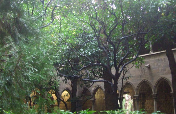 Cloître de Sainte Anne