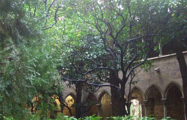 St. Annes' Cloister