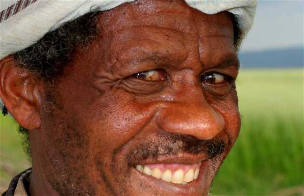 Ethiopia's faces